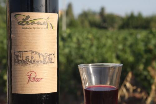 agriturismo leone vino rosso