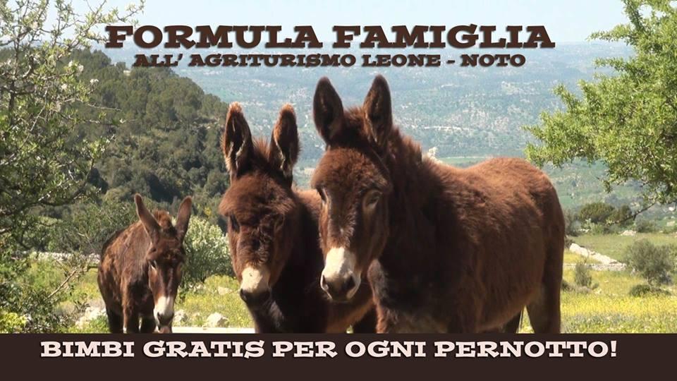 Formula Famiglia all'Agriturismo Leone!